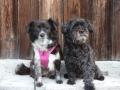 Ella (Lilly) und Josch Dez 16